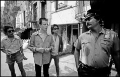USA. New York City. 1978. Trendy, looking tough, but only pussycats.